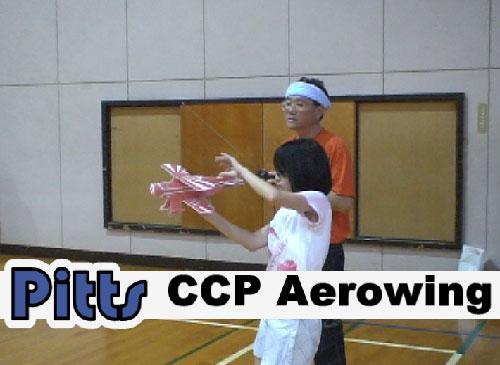 Pitts:CCP社エアロ...